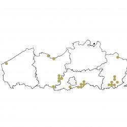 Verspreidingskaart (2007), Zeggenkorfslak