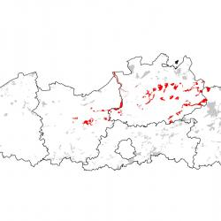 Kaart van de speciale beschermingszones voor: Kleine modderkruiper