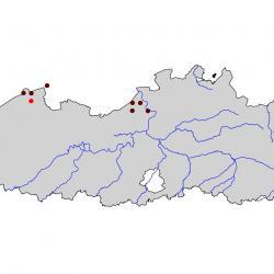Verspreidingskaart Strandplevier. Kaart afkomstig van de atlas van de Vlaamse broedvogels van 2000 - 2002.