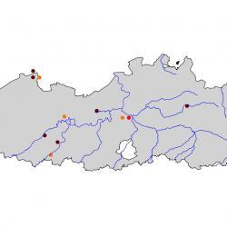 Verspreidingskaart Kwak. Kaart afkomstig van de atlas van de Vlaamse broedvogels van 2000 - 2002.
