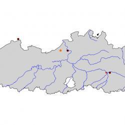 Verspreidingskaart Kleine zilverreiger. Kaart afkomstig van de atlas van de Vlaamse broedvogels van 2000 - 2002.