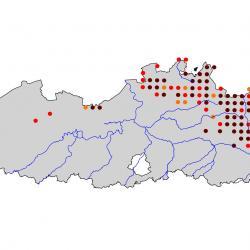 Verspreidingskaart Boomleeuwerik. Kaart afkomstig van de atlas van de Vlaamse broedvogels van 2000 - 2002.