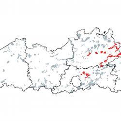 Kaart van de speciale beschermingszones voor: Kalkhoudende moerassen met Cladium mariscus en soorten van het Caricion davallianae