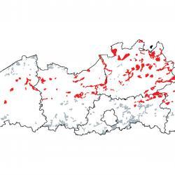 Kaart van de speciale beschermingszones voor: Open grasland met Corynephorus- en Agrostis-soorten op landduinen