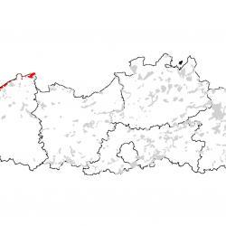 Kaart van de speciale beschermingszones voor: Beboste duinen van het Atlantische, continentale en boreale kustgebied