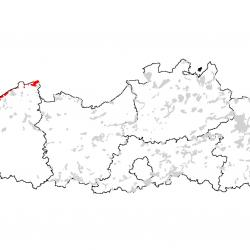 Kaart van de speciale beschermingszones voor: Atlantische vastgelegde ontkalkte duinen (Calluno-Ulicetea)