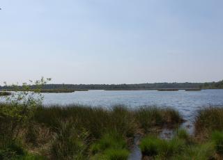 Kalmthoutse Heide (2) ©  An W.
